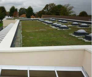 GreenRoofing